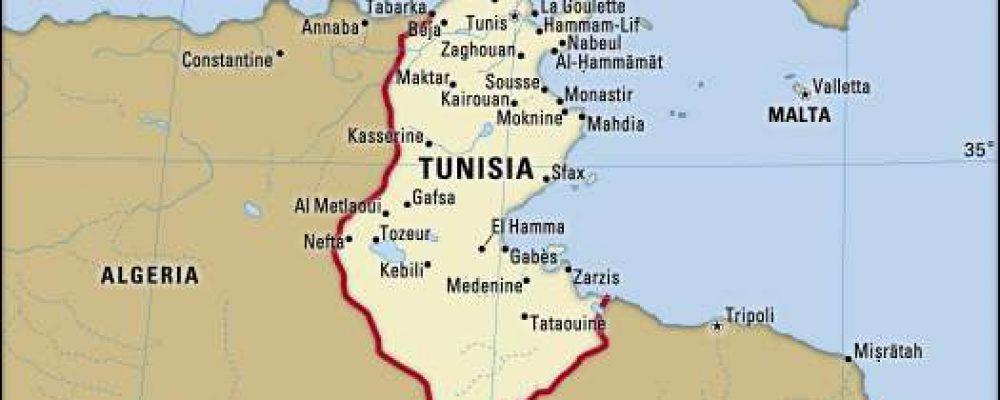 Tregtia ndërkombëtare. Përse Tunizia (II)