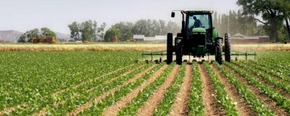 Mbështetja e vërtetë për bujqësinë  biologjike